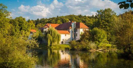 Do you want to transfer business to Slovenia?