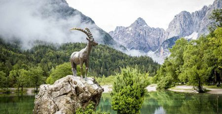 Obtaining a residence permit in Slovenia