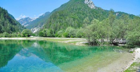Reasons for business immigration to Slovenia