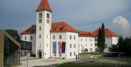 Forms of business in Slovenia