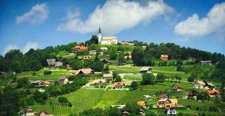 Invoice on the company name in Slovenia, EU