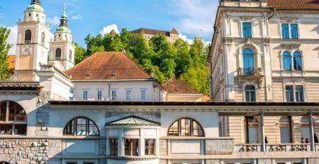 Establishing a company in Slovenia