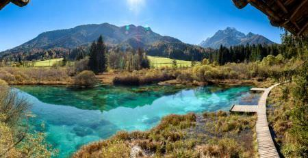 How to obtain tax number in Slovenia?