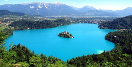 Most popular company activities in Europe, Slovenia
