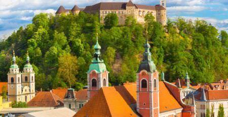New LTD company in Slovenia