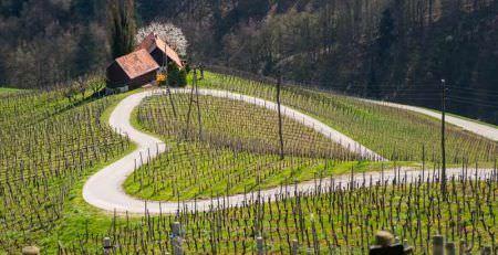 Obtaining Slovenian citizenship