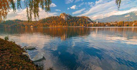 Open a subsidiary of your company in Slovenia, EU