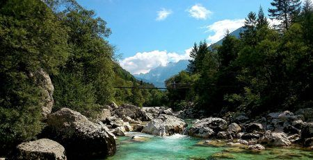 Register an IT company in Slovenia