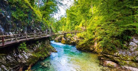 Living in Slovenia through business immigration