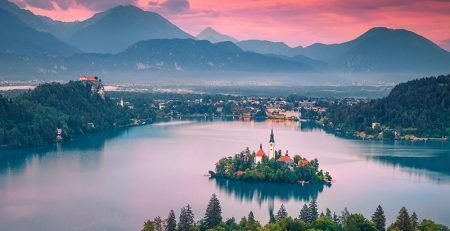 Revenue of the company – business immigration to Slovenia