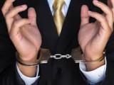 pregon gospodarske kriminalitete