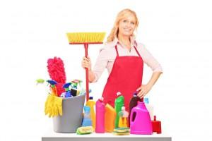 Dopolnilno delo: Za pomoč v gospodinjstvu mora vrednotnico kupiti naročnik