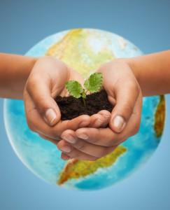 Kako se lahko organizira socialni podjetnik?