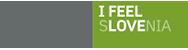 SPIRIT Slovenija, javna agencija