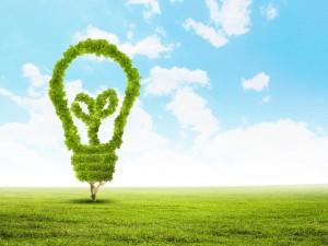 Socialno podjetništvo ustvarja nova delovna mesta