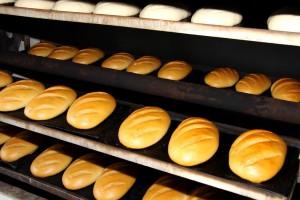 Inšpektorji zaprli pekarno in zasegli opremo