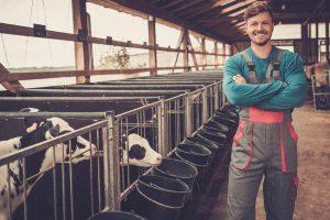 trg mleka