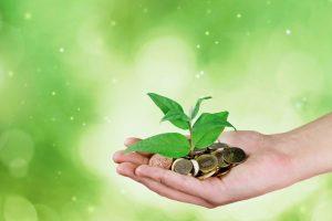 dodelitev finančnih spodbud