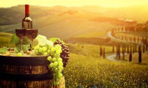 mali proizvajalec vina