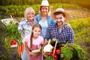 dopolnilna dejavnost na kmetiji