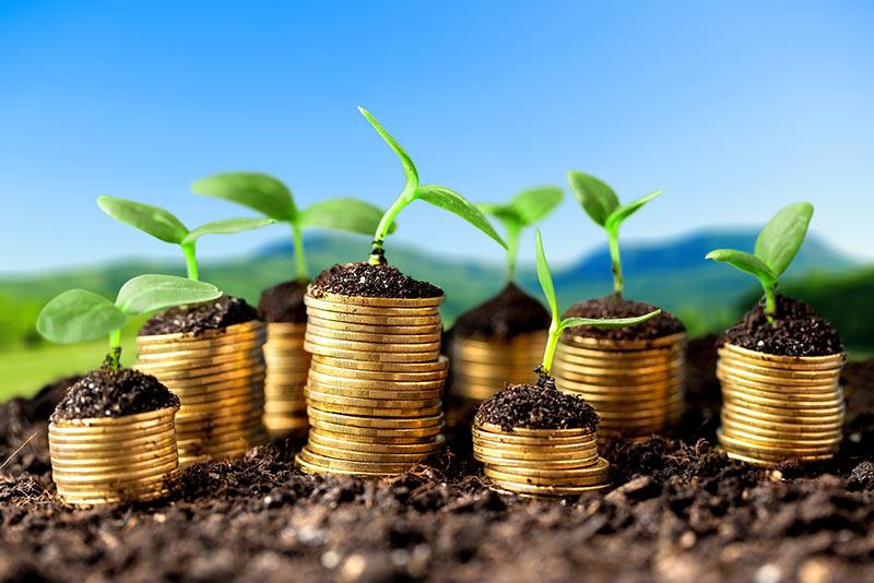 Ministrstvo za gospodarski razvoj in tehnologijo obljublja z razpisi bogato leto 2019