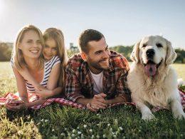 Začel je veljati družinski zakonik - kaj nam prinaša?