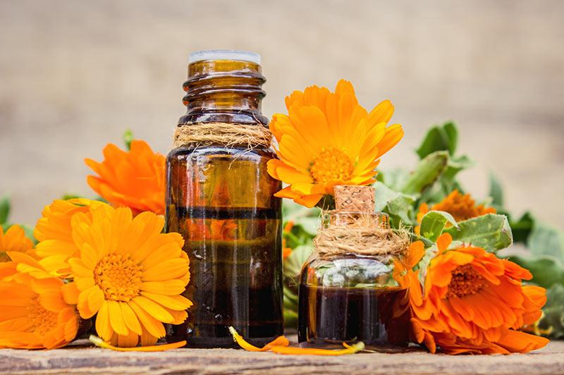 Eterična olja so naravna komponenta marsikaterega izdelka doma… postanite izdelovalec eteričnih olj!