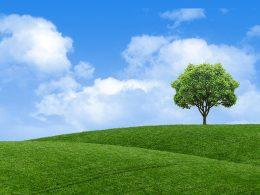 Sprememba namembnosti zemljišča