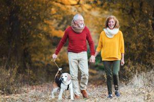 Pokojninska reforma 2020: pokojnine bodo višje!