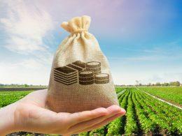 Finančno nadomestilo kmetom zaradi izpada dohodka